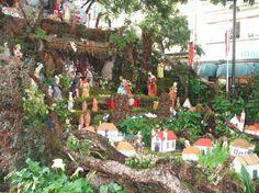 2006 christmas 2005 xmas funchal madeira portugal decorations crib