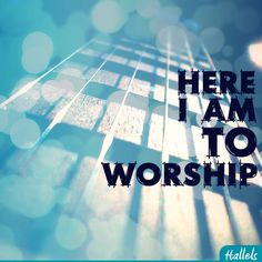 And here I am to worship, Here I am to bow down, Here I am to say that you're my God, You're altogether lovely, Altogether worthy, Altogether wonderful to me. -CHRIS TOMLIN (Here I Am To Worship)  #Hallels #Jesus Christ #Worship Follow us at http://gplus.to/iBibleverses