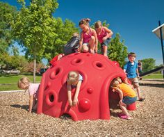 The Cozy Dome® climber provides kids a place to get away. Kids can crawl under and on top of the dome playground climber.