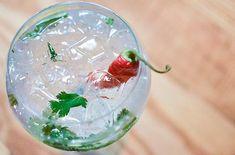 cocktail gin piment coriandre