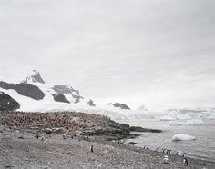 Hans-Christian Schink, Antarctica 6, 2010, C-Print/Diasec, 178 x 215 cm und 121 x 145 cm, Auflage 5 + 3