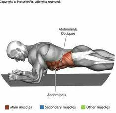 Obliques exercise