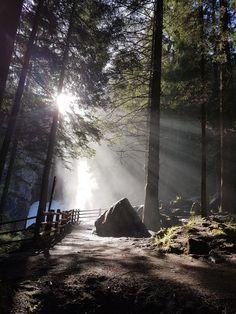 herrliche Momente , Natur Pur, Entschleunigung und im Moment verharren  #Alphotelstocker #fastenundwandern