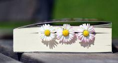 Boek, Lezen, Literatuur