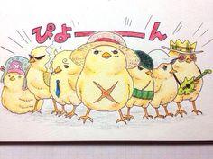 One piece straw hats crew pirates Monkey D. Luffy, Roronoa Zoro, Usopp, Franky, Brook, Sanji, Tony Tony Chopper as chicks
