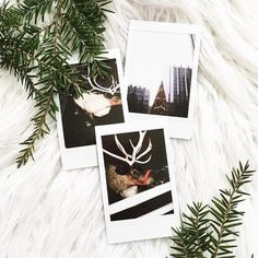 #UOONYOU - Urban Outfitters 12 Days Of Christmas, Christmas Photos, Christmas Lights, Polaroid Pictures, Polaroid Ideas, Polaroids, Mistletoe And Wine, Twinkle Lights, Merry And Bright