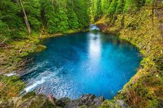 The Tamolitch Blue Pool on the McKenzie River trail, and it's as pretty and blue as this photo! To get here take the McKenzie Hwy 126 14 miles east of McKenzie Bridge. If you are coming from the Hwy 20 junction it's about 10 miles past south of the junction. Turn at the Trailbridge Campground sign, you will cross a bridge and quickly turn right onto a gravel road. After about a third of a mile park at the signs for the trail crossing.The McKenzie River, bike or hike or swim.