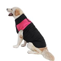 Echofun Pet Dog Cotton Padded Clothes Pet Winter Vest with Harness Hole for Large Dogs -- You can get more details by clicking on the image.