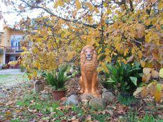 The Narnia Lion - Castanheira de Pera