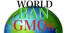 World Ban on GMO's Petition @   www.avaaz.org/en/petition/Ban_Genetically_Modified_Organisms_Worldwide/?cDUEFcb