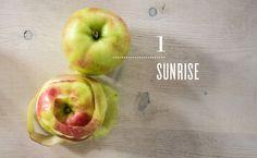 La saison des pommes: un petit guide pratique - Partie 1   Natrel   Natrel