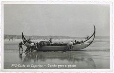 Portugal, Naval, Terra, Moose Art, Boat, Animals, Vintage, Half Moons, Loom Animals
