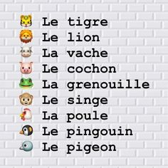 French Language Lessons, French Language Learning, French Lessons, French Phrases, French Words, French Quotes, Learning French For Kids, Teaching French, Spanish Notes