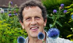 Thistle do nicely: Pick the right thistles for your borders, and their beauty  will more than justify the pain