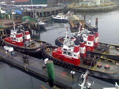 Cates Tug Boats---Lonsdale Quay, North Vancouver