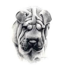 Afbeeldingsresultaat voor tekening potlood