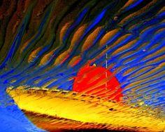 Dream boat by Miron Abramovici