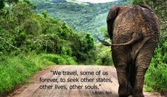 """""""We travel, some of us forever, to seek other states, other lives, other souls."""" Anais Nin on Travel #quotes #travel #lives #souls"""