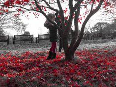 Isobel in Roath Park November 23rd 2013