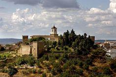 Castilla y León tiene una rica historia que se revela a través de sus monumentos históricos. El Acueducto de Segovia está tan bien conservado que no parece que lleva 2.000 años desde lo levantaron. En Castilla y León sigue habiendo edificación romana, callejuelas con empedrados, puentes romanos, etc.- El Muni.