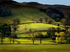 Yorkshire Dales - From well-known Wensleydale and Swaledale, to obscure and evocative Langstrothdale and Arkengarthdale, this national park is characterised by a distinctive landscape of high moorland, stepped skylines and flat-topped hills rising above green valley floors. - Lonely Planet