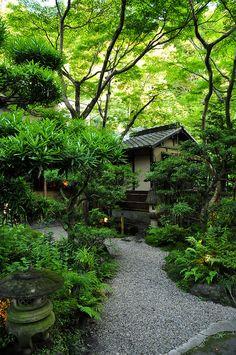 Gorgeous green sanctuary of a garden. | Via Japanlove
