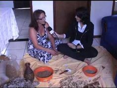 ARTE FOLHAS SECAS - YouTube