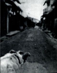 Daido Moriyama / Bye, bye photography