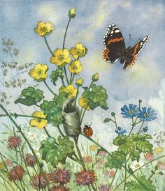 Birth of a butterfly, Erich Heinemann and illustrated by Fritz Baumgarten. Woodland Illustration, Children's Book Illustration, Baumgarten, Flora Und Fauna, Nature Posters, Fairy Art, Art Inspo, Illustrators, Fantasy Art