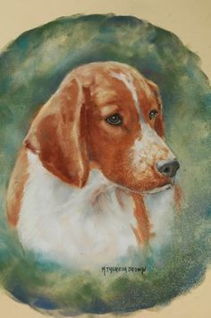 Pastel of a Welsh Springer Spaniel by artist M Theresa Brown - Mystic Acres Ultimate Weapon VCD2 GN RAE MX MXJ OF  (2013 Iron Welsh Champion), but we call him Uncle Logan!