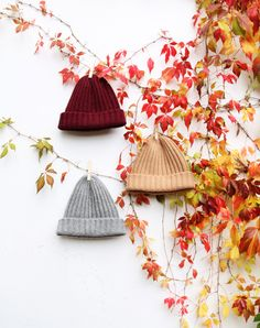 Autumn Ribbed Beanies