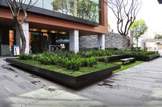 dlc_coyoacan corporate campus 06_112913  Cool steel planter with grade change