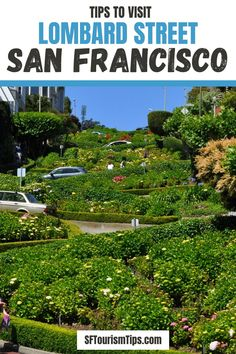 Have you always wanted to visit one of the crookedest streets in the world? Now is your chance! Find tips to visit Lombard Street to enjoy everything it has to offer. #lombardstreet #sanfranciscothingstodo #sanfrancsicofree California Travel Guide, California City, California National Parks, California Vacation, Visit California, Death Valley National Park, Joshua Tree National Park, San Francisco Attractions