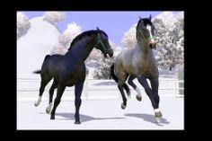 Sims 3 Horses Jumping | Pin it Like Image