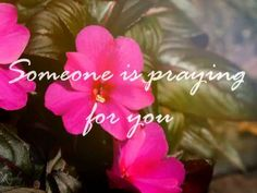 Someone Is Praying For You - Antrim Mennonite Choir - YouTube / Music / Singing / A cappella / Choral / Mennonite / Anabaptist / Chorale / Vocal / Audio / Video /