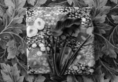 by jerry takigawa Alfred Stieglitz, Still Life Photography, Photomontage, Flora, Composition, Landscapes, Anna, Collage, Models
