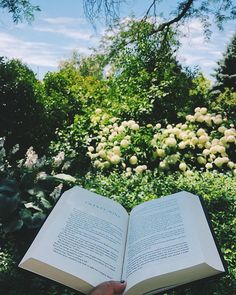 Today is a heavy coffee day dealing with anxiety shifting plans deadlines and humidity...but the sky is blue and the lilac is blooming. #booksandflowers #booksandcoffee #books #reading #booklove #bookblog #lilac #readingandwalking #readingwhilewalking