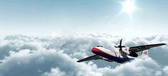 Bayon airlines internal flight Cambodia
