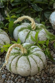 idées de citrouille Here's a fun Pumpkin idea for your fall decor! Of all the pumpkin ideas I would have to say these concrete pumpkins really stuck to me. They are super versatile and take under an hour Concrete Crafts, Concrete Art, Concrete Garden, Concrete Projects, Concrete Leaves, Cement Art, Cement Planters, Diy Projects For Fall, Fall Crafts