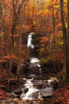 This Hidden Spot In Kentucky Is Unbelievably Beautiful And You'll Want To Find It When you seek out the Tioga Falls Trail, you'll get to experience the essence of Kentucky's natural beauty. Hidden Places, Secret Places, Fall Pictures, Nature Pictures, Kentucky Hiking, Places To Travel, Places To See, Autumn Scenery, All Nature