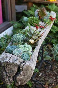 Decorar con cactus y suculentas. Aquí os dejamos algunas ideas para decorar con cactus y #suculentas y crear espacios verdes en casa #espacioverde