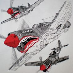 P-40 Flying Tigers Back
