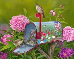 Untitled-1 house wrens_edited-2 copy personalization mailbox_edited-1 copy (Small) (Small).jpg (596×480)