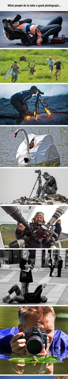 What people will do for good photograph