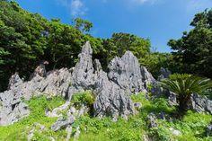 日本でも訪れたい県で常に上位をキープする沖縄。観光の名所から定番のデートスポットまで。沖縄 のおすすめ観光スポットをランキングでご紹介します。ぜひ参考に、旅行の予定を立ててみてはいかがでしょうか。