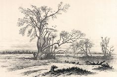 """Edwin Forbes Civil War Drawings   On Picket at the River Bank,"""" Edwin Forbes, copper plate etching ..."""