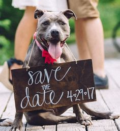 Save the Date Sign for Pet by kymberlikalligraphy on Etsy