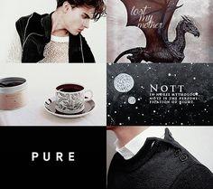harry potter character aesthetic: theodore nott