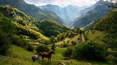 Parque Natural de Redes, el secreto mejor guardado de Asturias