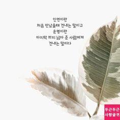 인연과 운명 Learn Korean, Wise Quotes, Affirmations, How To Memorize Things, Romantic, Messages, Writing, Love, Sayings